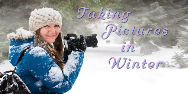 photos in winter